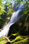 Washington Falls