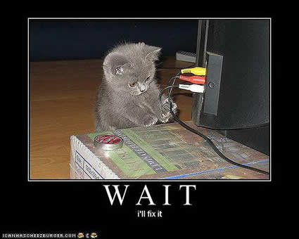 Funny-pictures-kitten-will-fix-it by STALKER5051