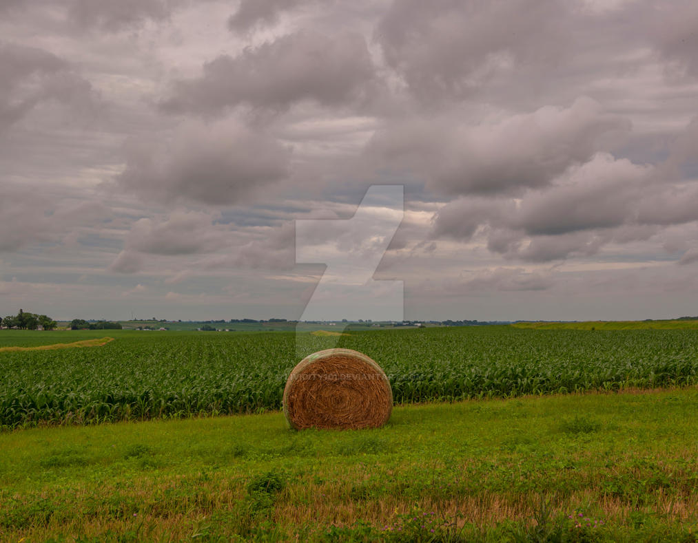 CWW 0248 Panorama fhdr by lividity101