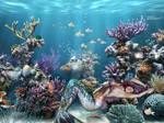 Mermaid Dreams by BBstar7