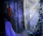 The Forbidden Path to the Secret Garden