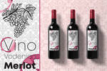Wine label concept - www.foxmediahouse.com