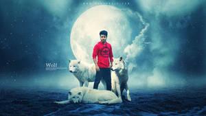 White Wolf by hasshasib001