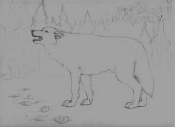 Wolf - WIP 1 by Ookami-Yokai