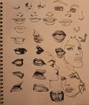 Nose and Mouth feature Study with Copic Sketch Gre