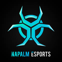 Napalm Esports