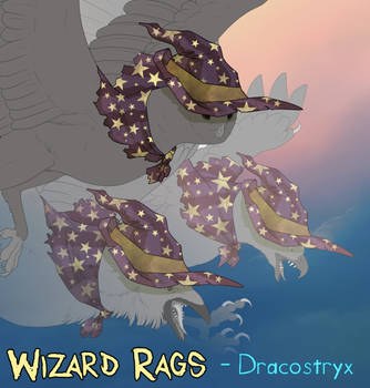 Dracostryx: Wizard Rags