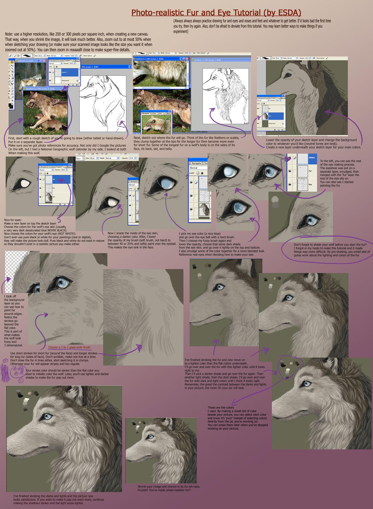 Fur and Eye Tutorial