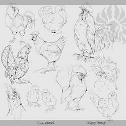 Warmup: Chickens