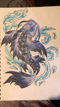 Koi Fish upstream
