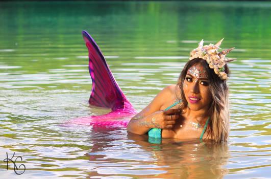 Pink Mermaid II