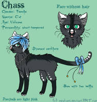 Chass by taivalsin