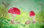 Mushrooms in the Undergrowth by Nocturne-Aubade