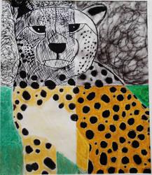 cheetah quad drawing