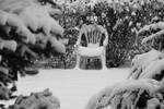 The Ubiquitous White Chair III