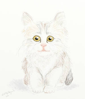Cica Patinak
