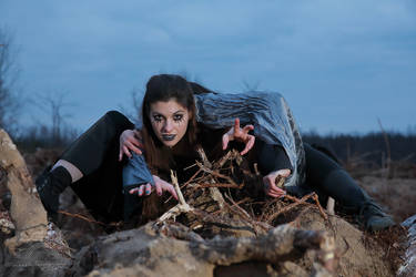 Fairies of the Murdered Woods Part III Series III by HoremWeb