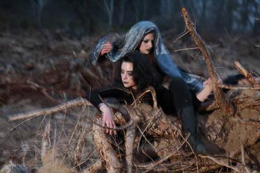 Fairies of the Murdered Woods Part III Series II by HoremWeb