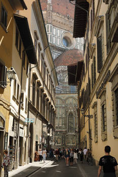 Florence in a Nutshell - Too Big Beauty