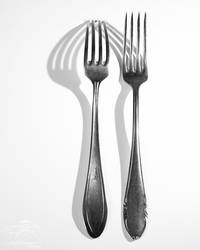 Study of Two Forks and One Light Source by HoremWeb