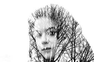 Memory of the Trees (Double Exposure)