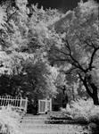 The Church Garden by HoremWeb