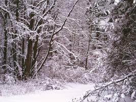 Snowy Road by ThatArtistFeller