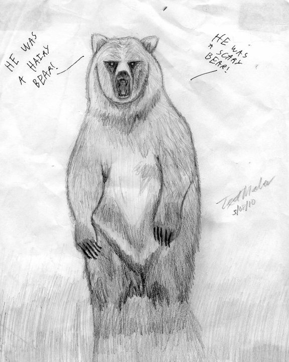 The Hairy Scary Bear By Tlmader On Deviantart