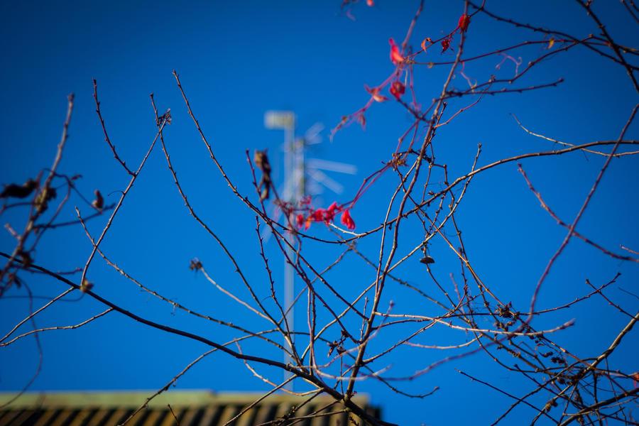 Autumn by Parasenak