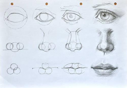 Facial features construction(cyclops tutorial :D)