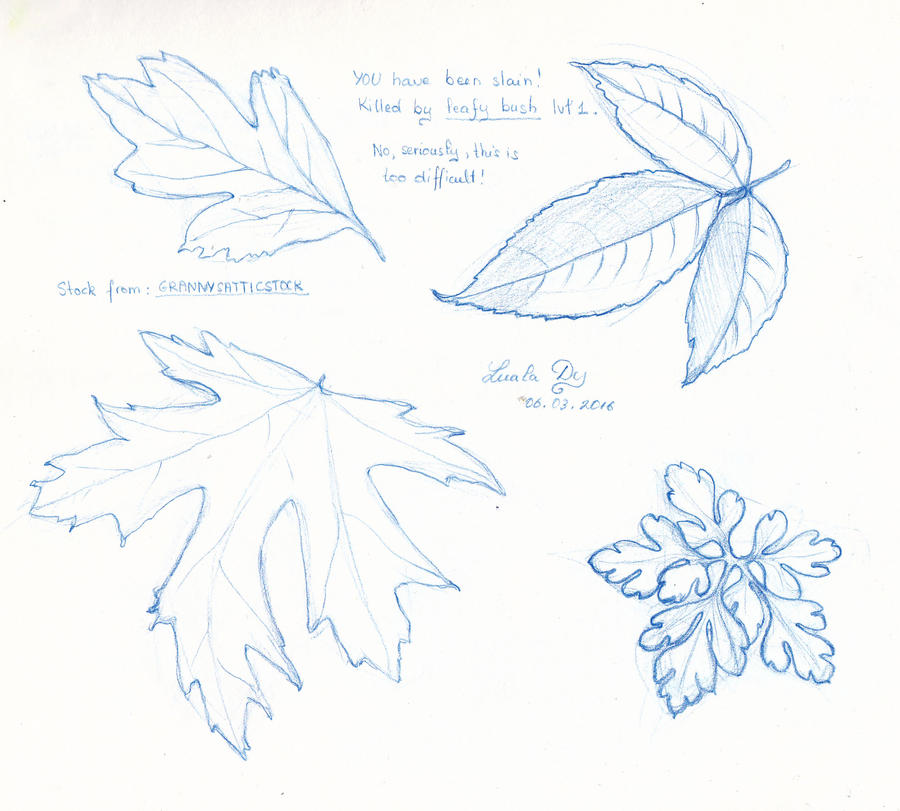 Weekly sketches: Leaves by LualaDy
