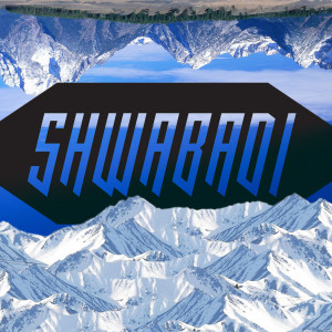 shwabadi's Profile Picture