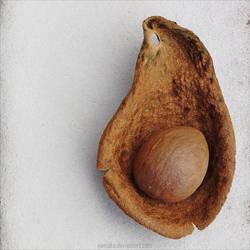 The womb by NanisKa