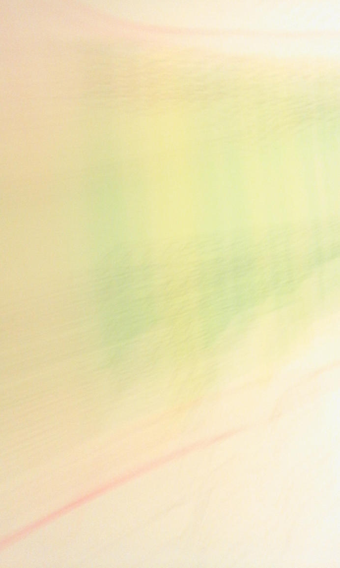 Rainbow by Michawolf13