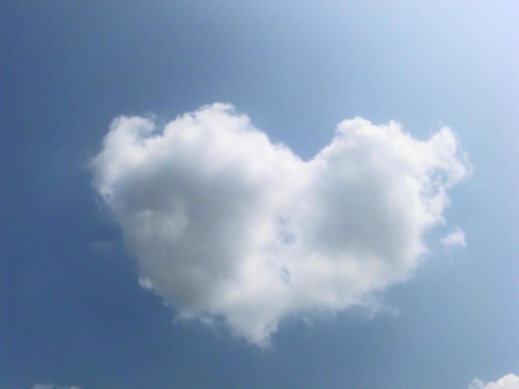 Love by Michawolf13
