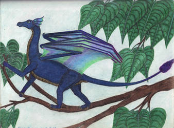 Scaled Fairy Dragon by CherokeeGal1975
