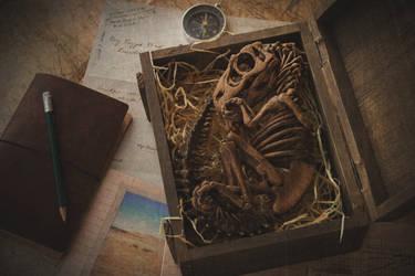 Prehistoric Treasure