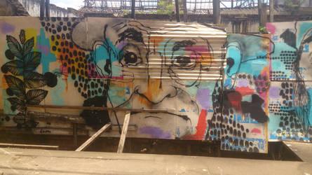 Grafitti no bairro Monte Alegre em Piracicaba 2