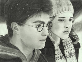 Harry and Hermione by KathrynAmanda