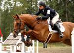 Horse Trials Stock 8