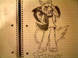 2011 SW Shinnoh Figueroa by TeenPioxys101