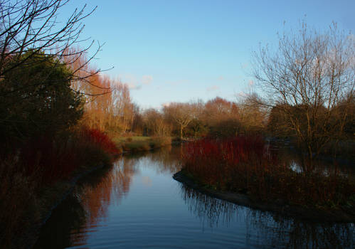 Wetlands Park Lake