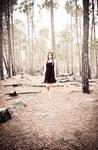 MISSynthetic Walking the Woods