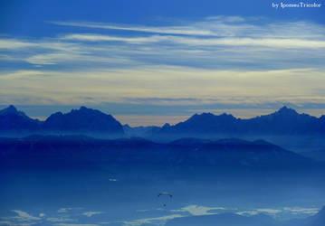Blue Parachute by IpomeaTricolor