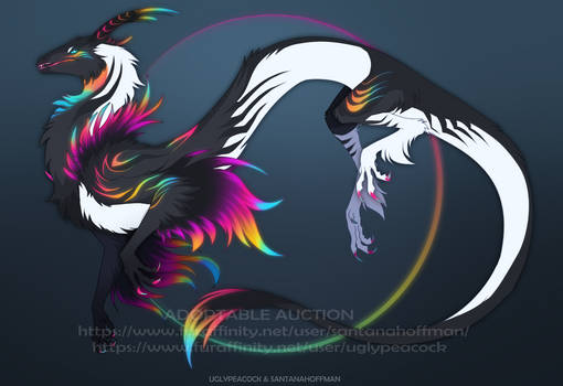 Adoptable Auction |CLOSED|