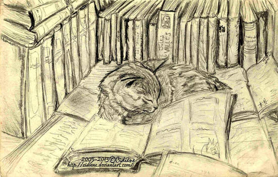 Kitty dreams of books too