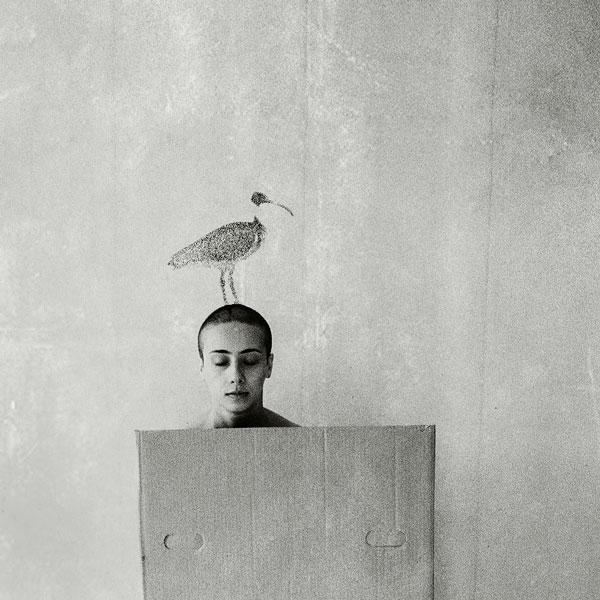 Imaginary birds by WonderMilkyGirl