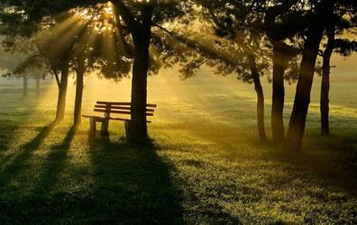 quiet sun by zaccool14