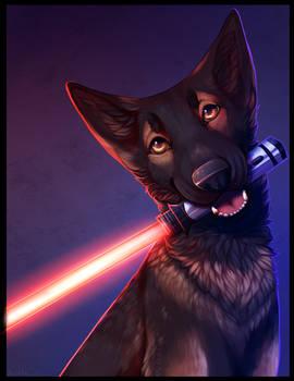 Good boy on the dark side