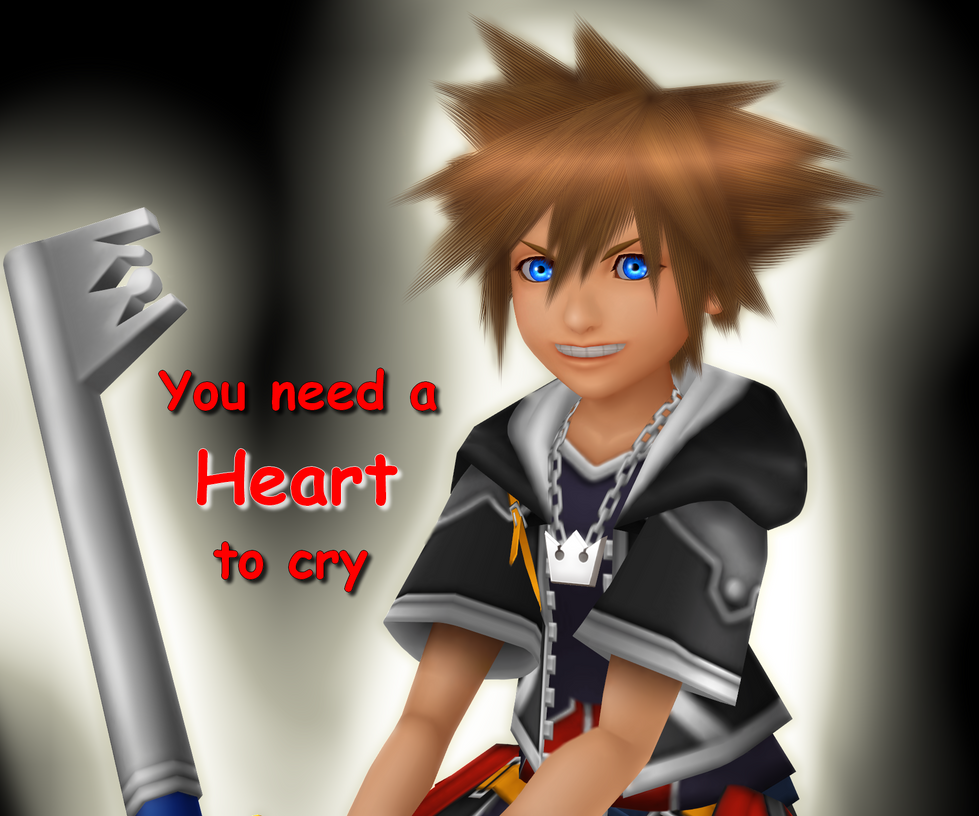 Sora - You need a HEART to cry by TemmieVega1999